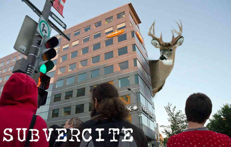 Photo montage : de dos, des manifestant-es regardent le bâtiment sur lequel on disserne le logo lointain de Pétrolia. Sauf que derrière, un cerf géant regarde.